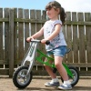 Mini-Cruiser Lightweight Balance Bike