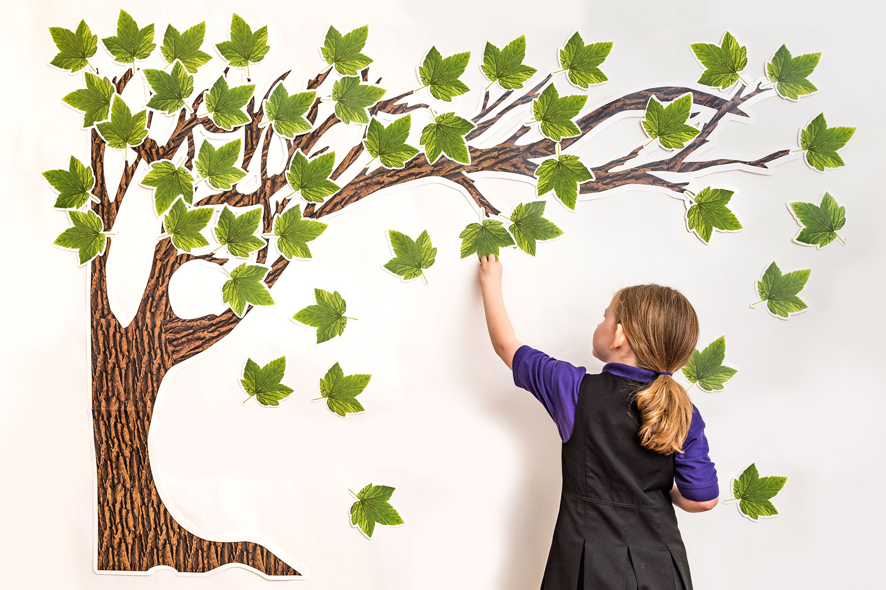 Big Tree Bulletin Board Set
